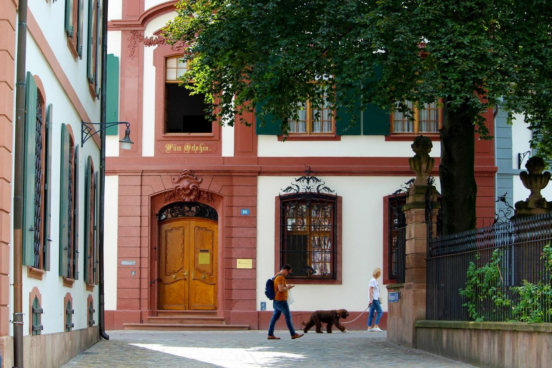 5 conseils pour faire du tourisme en ville avec son chien